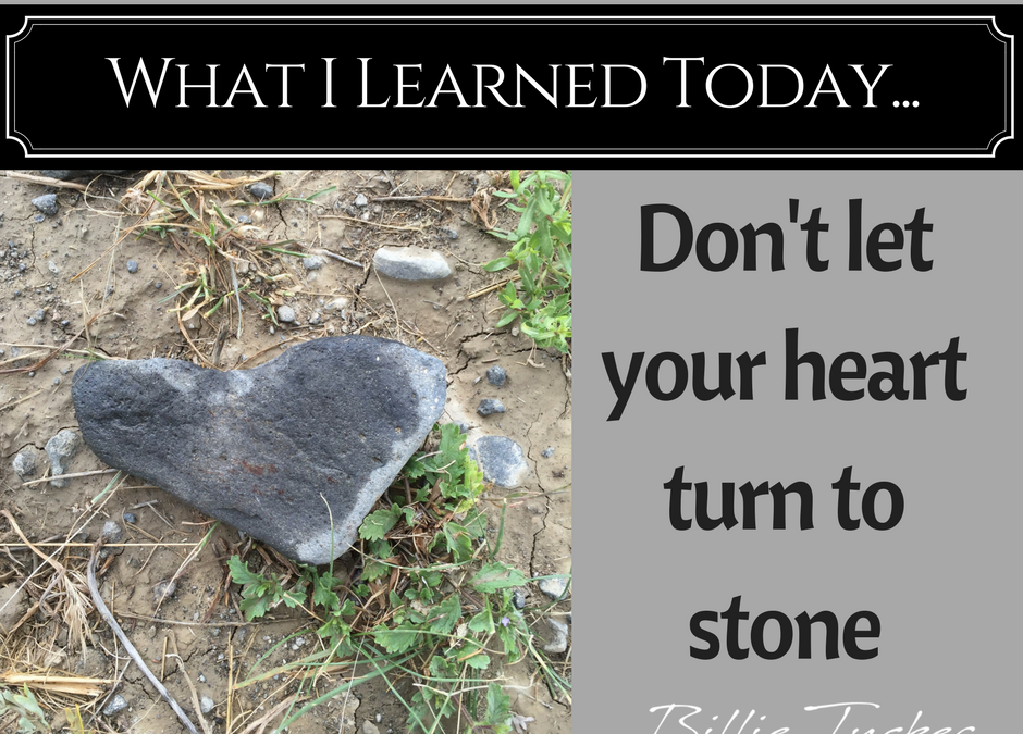 Beware Of Stone Hearts – Lessons Learned